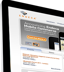 Endeca Technologies